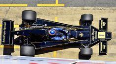 1974 Ronnie Peterson, Lotus 76 Ford Cosworth DFV 3.0 V8