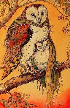 Owl art by Charles van Sandwyk Art And Illustration, Illustrations, Owl Artwork, Owl Always Love You, Wise Owl, Mellow Yellow, Larp, Beautiful Birds, Painting & Drawing