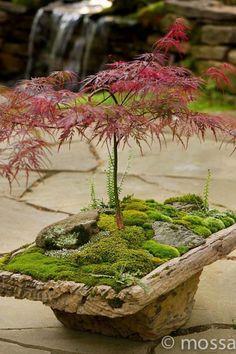 29 creative Japanese garden designs you can build to complement your garden . 29 creative Japanese garden designs that you can build to complement your garden . Japanese Garden Design, Mini Garden, Japanese Garden, Backyard Garden, Asian Garden, Flowers, Diy Garden, Mini Zen Garden, Bonsai Garden