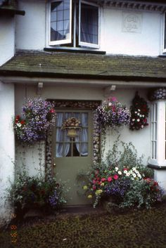 Pretty door covered in shells and surrounded by hanging baskets of colourful flowers, Clovelly, Devon, England
