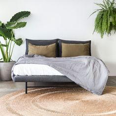 Our picks for a cosy bedroom space from our own in-house collections alongside options from our favourite local suppliers. Bedroom Furniture, Furniture Design, Thing 1, Linen Sofa, Occasional Chairs, Leather Sofa, Soft Furnishings, Timeless Design, Simple Designs