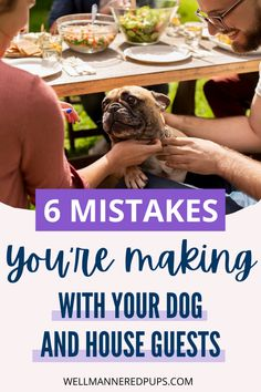 Tips for dog owners: 6 Big mistakes you are probably making with your dog and house guests. Leash Training, Dog Training Tips, House Guests, Dog Mom, Dog Owners, Dog Life, Mistakes, Your Dog, Pup