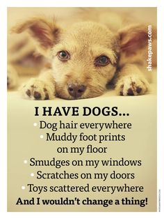 Dogs fur-ever❤️