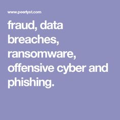 fraud, data breaches, ransomware, offensive cyber and phishing.