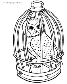 hedwig harry potter owl coloring pagesfree