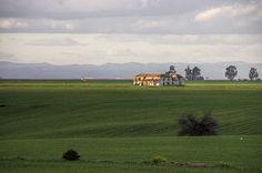 Cortijo abandonado. Ecija, Sevilla Muse, Golf Courses, Spain, Mountains, Travel, Inspiration, Campinas, Abandoned, Haciendas