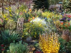 - Amazing Color for the Fall Landscape on HGTV