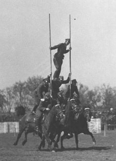 Polish cavalrymen playing around Arabian Art, Napoleon, Retro, Wwii, Poland, Battle, The Unit, Gallery, War Horses
