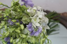 Dendrobium Orchids and Sweet pea bridesmaids bouquet created by Hannah Berry Flowers www.hannahberryflowers.co.uk for a wedding at Farnham Castle, Surrey