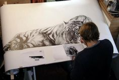 Welcome to the fine art gallery and online shop of Richard Symonds where you can buy limited edition prints of elephants, tigers, lions and other wildlife art. Animal Drawings, Art Drawings, Awesome Drawings, Drawing Animals, Pencil Drawings, Tiger Drawing, In The Zoo, Sketch Painting, Wildlife Art
