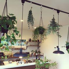 照明/モノトーン/ハンドメイド/salut!/雑貨/観葉植物…などのインテリア実例 - 2016-10-23 00:46:08 | RoomClip(ルームクリップ)