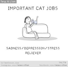 IMPORTANT CAT JOBS - SADNESS/DEPRESSION/STRESS RELIEVER