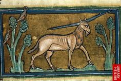 A yale pictured in a thirteenth-century English bestiary. (British Library)