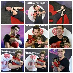 Brendon with puppies at iHeartFestival