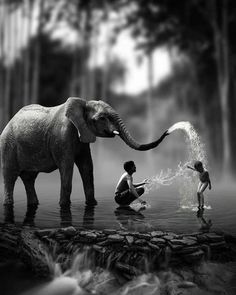Black and White Photography People: Get Professional Looking Pictures With These Tips – Black and White Photography Animal Photography, Amazing Photography, Nature Photography, Elephant Photography, Pinterest Photography, Beautiful World, Animals Beautiful, Cute Animals, Fotografia Pb