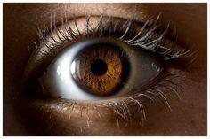 Makro Auge von MSTR Photo
