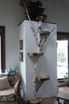 White Birch wall cat tree I like this item because it natural looking and brings something unexpected. I have two cats so I would like something comfortable/attractive for them to lounge on.