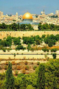 Jerusalem is the Palestine Capital