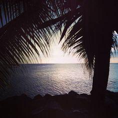 "Repost from Instagram ! #WeLike ! #Madinina by @celiflore ""Good evening  #bonne#soirée#sous#les#tropiques#coucher#soleil#crepuscule#martinique#madinina#westindies#sunset#sea#evening#tropical#landscape#"" http://ift.tt/1HJPfE0"