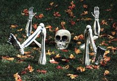 Skeleton Rising from the Grave (ground)