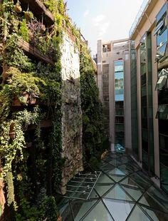 Oculto en el corazón de Madrid, inspirado en los legendarios Jardines Colgantes de Babilonia, este fascinante rincón verde es un diseño del arquitecto Félix González Vela, creado para proporcionar una vista fresca y relajante a quienes se alojan el Hotel Santo Domingo.