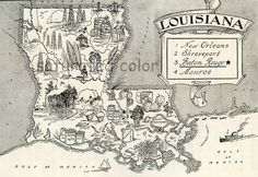 Louisiana Map  A Delightfully Amusing ORIGINAL by SaturatedColor