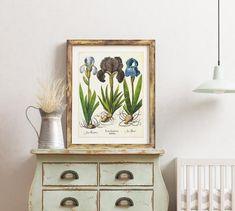 Tree Illustration, Botanical Illustration, Plant Art, Iris Flowers, Irises, Botanical Prints, Poster Wall, Botany, Printable Wall Art