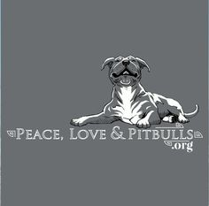 Pitbull tshirts make the perfect gift. Show off your love for the breed with our Pitbull apparel! I Love Dogs, Puppy Love, American Pitbull, American Bulldogs, Pitbull Terrier, Bull Terriers, Terrier Mix, Bully Dog, Pit Bull Love
