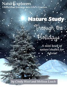 Nature Study Through the Holidays Advent Mini-Unit
