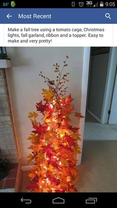 Fall tree with tomato cage
