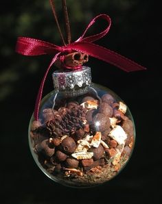 ~ Ornament Filled w/ Pinecones, Acorns & Other Natural Things ~ Berries, Pods & the like....