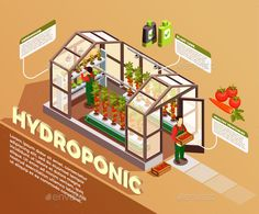 Buy Hydroponic Isometric Composition by macrovector on GraphicRiver. Hydroponic isometric composition with greenhouse image and description of construction elements and plant care method. Isometric Art, Isometric Design, Aqua Culture, Photoshop Rendering, Plant Illustration, Vector Photo, Plant Care, Hydroponics, Funny Design