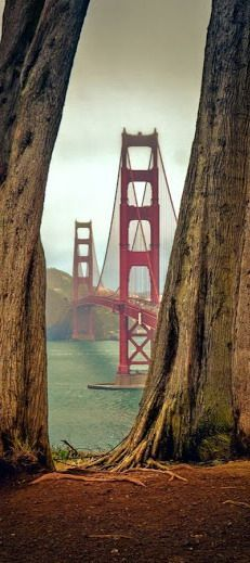 Finally, a different view of the world's most photographed bridge, the Golden Gate Bridge in San Francisco, California