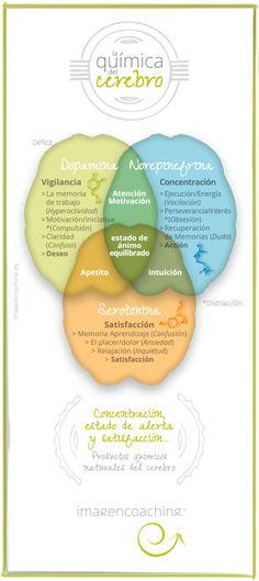 #imagencoaching. Tu #coach de imagen personal. Blog. La química del cerebro. Lla…