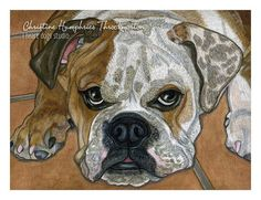 LOOKING for a GOOD HOME: English Bulldog Original mixed media painting by i heart dogs studio.