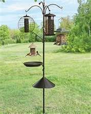 Great backyard bird feeding station