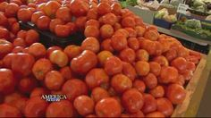 Food allergies in children on the rise