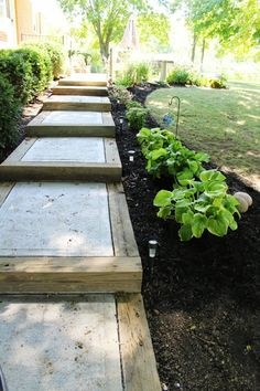 Concrete steps with a thick wood border. Nicely done. http://ohiothoughtsblog.blogspot.com/2013/09/building-sidewalk.html