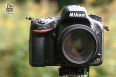 First Impressions: Nikon D600