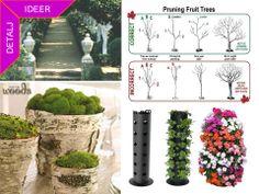 www garden ideas idea shop