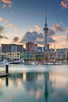 New Zealand Cities, New Zealand Travel, Vacation Destinations, Vacation Trips, New Zealand Adventure, Auckland New Zealand, World Cities, Dream City, Homescreen