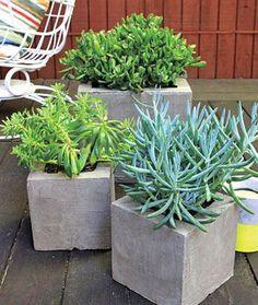 Schon DIY Cement Planter