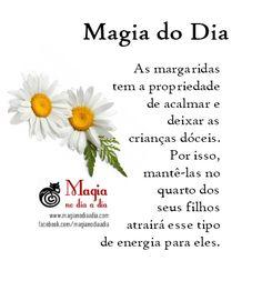 Magia no Dia a Dia: Magia do Dia: margarida