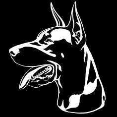 Doberman portrait with a red collar. Stencil Street Art, Doberman Dogs, Dobermans, Equine Photography, Animal Photography, Black Lab Puppies, Corgi Puppies, Black Labrador, Metal Art