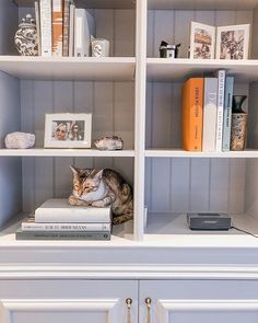 [New] The 10 Best Home Decor Ideas Today (with Pictures) - Shop our range of books with off online. Offer ends Sunday of the ultimate shelfie with the cutest fur babies at . Cabinetry, Decor, Beauty Room, Home, Home Bedroom, House Styles, Bookcase, House Interior, Room