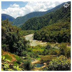 """""""#Ecuadoriana_Amazon"""" Descubre mas en rutaviva.com #rutaviva #allyouneedisecuador #ecuador #nature  #viajaprimeroecuador #natgeotravel #primeroecuador #ecuadorpotenciaturistica #ecuadorturistico #ecuadoramalavida #amalavida #descubreecuador #paisajesecuador #fotoecuador #SoClose #LikeNoWhereElse #AllInOnePlace #adventure #postalesecuador"""