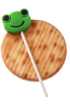 Very sweet and very cute: Such are the marzipan frog pops made by the confectioner Dahlia Weinman. Her Passover assortments include 10-plagues pops and marzipan matzos in various shapes and sizes. (Photo: Dan Neville/The New York Times)