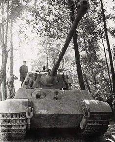 "The Royal Tiger ""captured by Soviet troops on the Sandomir bridgehead. Tiger Ii, World Of Tanks, Ww2 Panzer, Diorama, Tank Armor, Germany Ww2, War Thunder, Tiger Tank, Tigers"