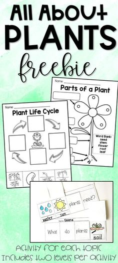 Parts of a plant, life cycle of a plant, what plants need to survive FREE printables! Differentiated for two levels! of a plant All About Plants Freebie - Parts of a Plant, Plant Life Cycle, What Plants Need Kindergarten Science, Teaching Science, Science Activities, Elementary Science, Teaching Plants, Sequencing Activities, Science Resources, Science Ideas, Life Science