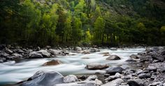 Time Lapse Photography of Rocky River Surrounded by Trees · Free Stock Photo